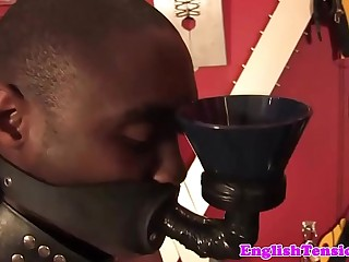 BDSM mistress dominates sub with strapon